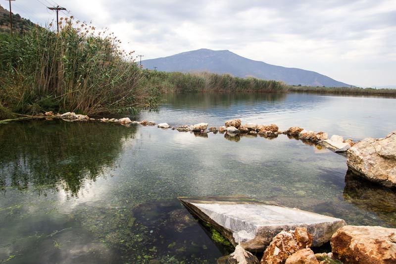 Moustos Wetland
