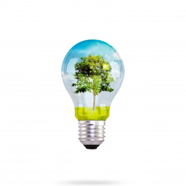 light-bulb-with-tree-inside_1232-2102